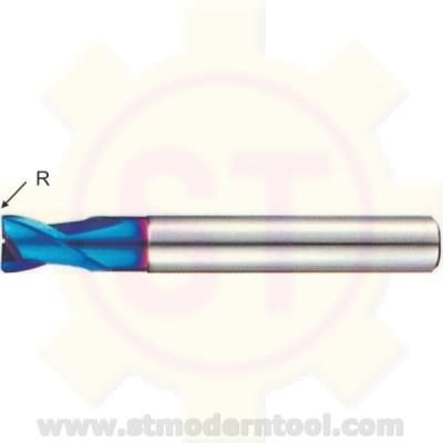 EM702/703 STK X70-POWER เอ็นมิลคาร์ไบท์ 2 ฟัน R เป็นมุมมน สำหรับเหล็กแข็ง 60-70 HRC
